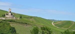 Vignoble de Wineck-Schlossberg